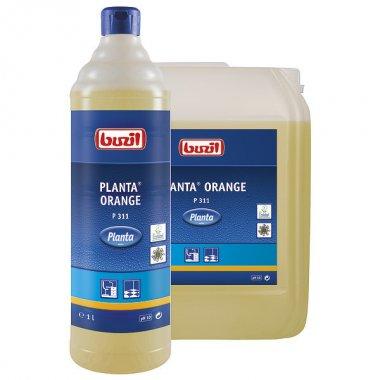 buzil_planta-orange